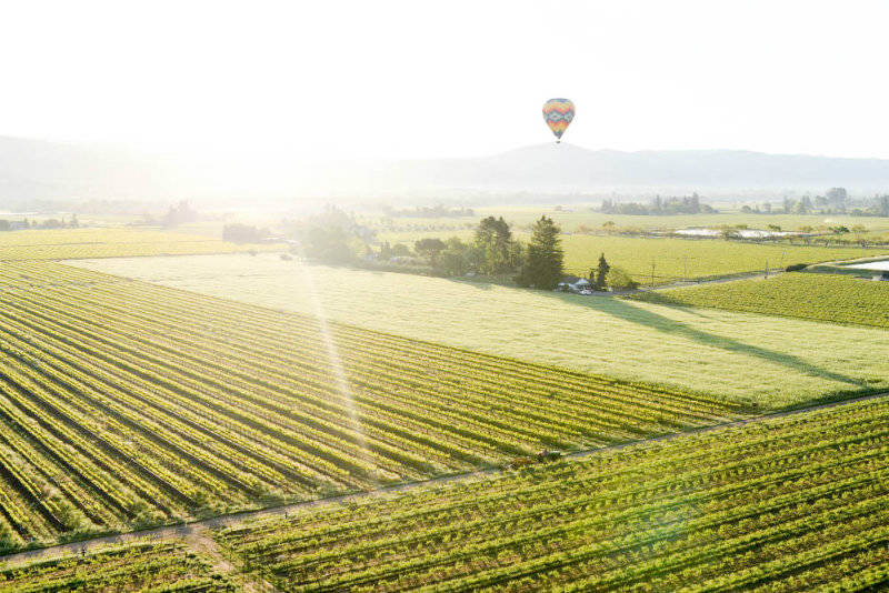 Napa Travel Guide: Play