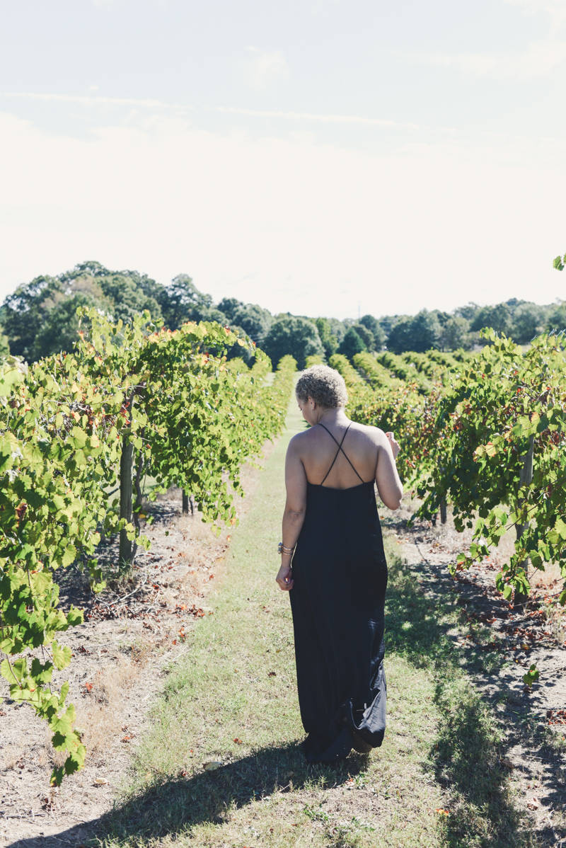 Exploring the Vineyards